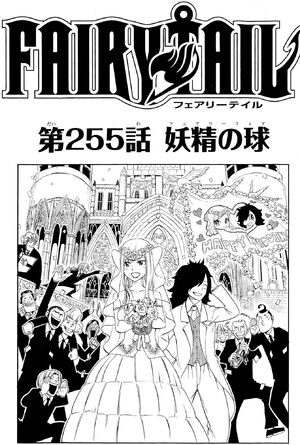 Cover 255