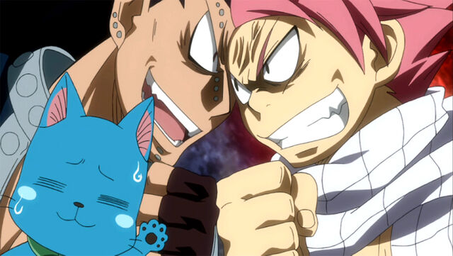 File:Gajeel and Natsu fighting about their cats.jpg