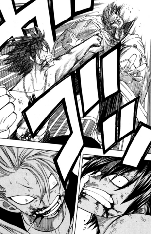 File:Gray defeats Lyon with a punch.png