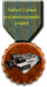 Fallout 2 aep medal