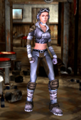 Leather armor BOS