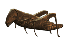 Fo4 item Gilded Grasshopper