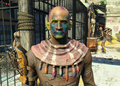 Fo4PackShawl.png