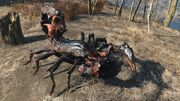 FO4 Radscorpion
