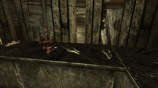 File:Andale Garden shed. Cannibal tools.jpg