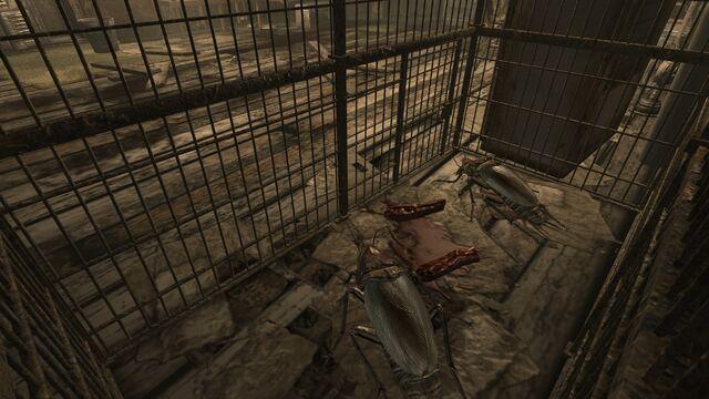File:FO3 Sniper Shack Jitters&Co 1.jpg