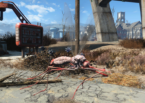 File:FO4 Red widow bloodbug.png