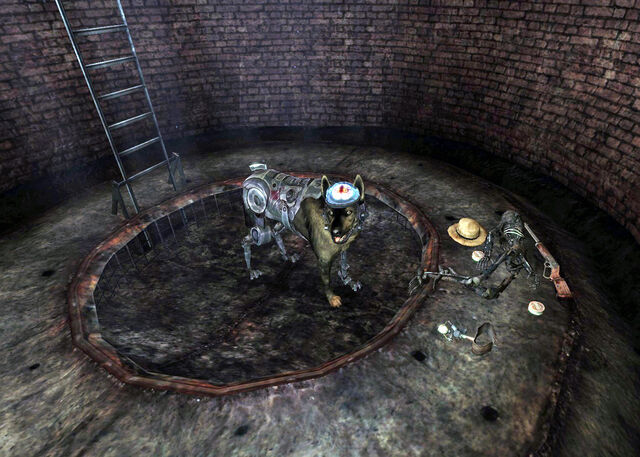 File:Jimmy in the well.jpg