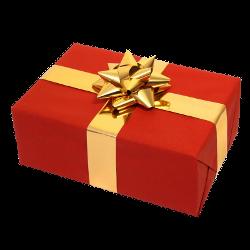 File:Gneko-christmas.png