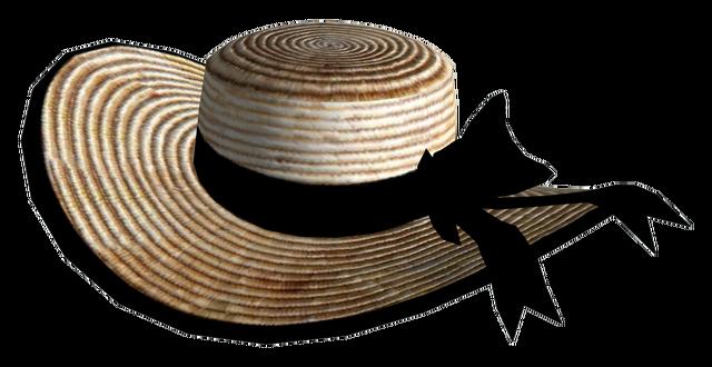 File:Vikkis bonnet.png