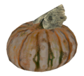 Gourd.png