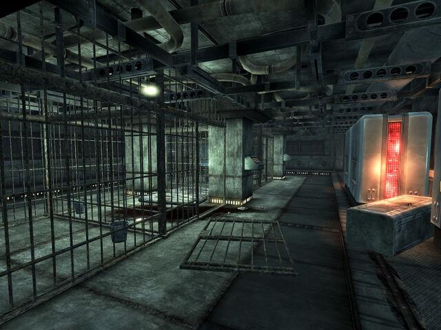 File:Y-17 med center cells.jpg