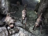 Vicious dogs Warren