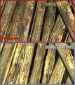 Thumbnail for version as of 07:05, November 29, 2010