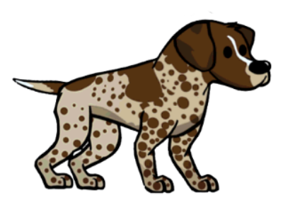 File:German Pointer.png