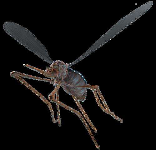 File:Bloodbug.png