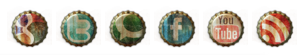 File:SocialIcons.png