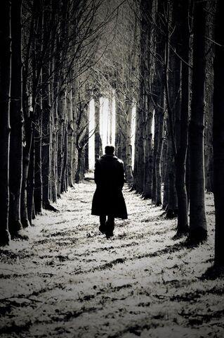 File:The Wanderer by soulful tears.jpg
