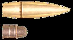FNV 556mm Bullet
