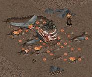 Crashedwhale