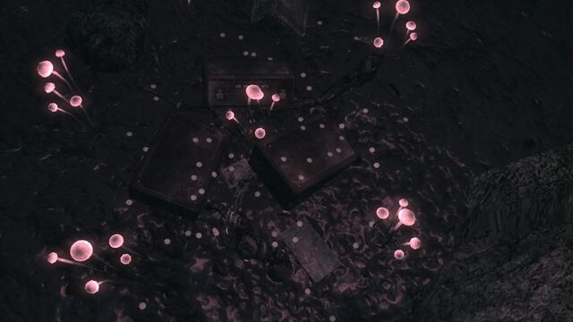File:Lake Mead Cave Skill Mag Location.jpg