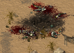 FoT fallen Brotherhood soldiers