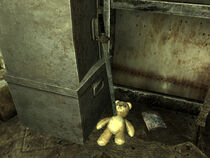TeddySkewed