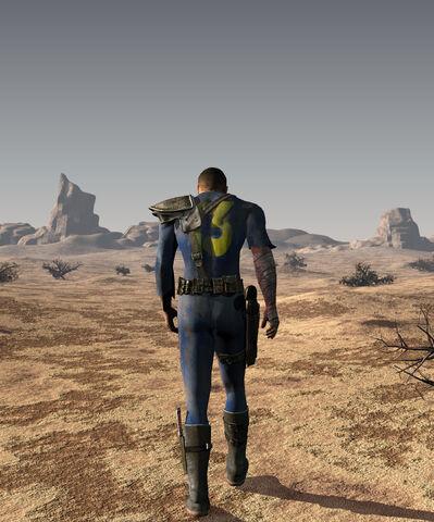 File:Into the desert.jpg