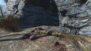 Dog armor cave