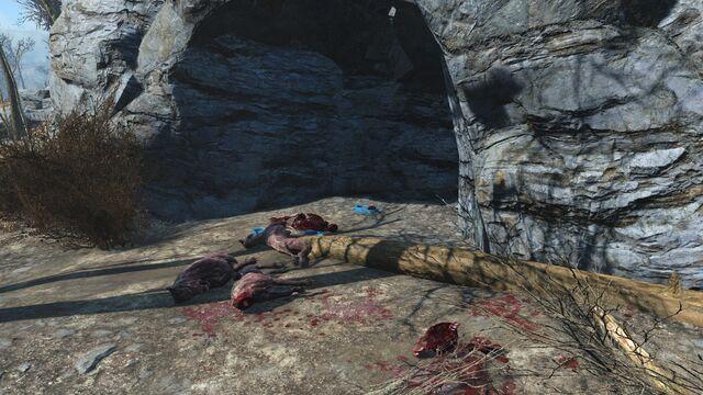 File:Dog armor cave.jpg