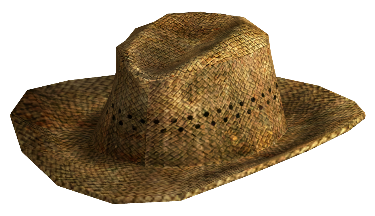 Cowboy Hat Images a Straw Cowboy Hat With a Wide