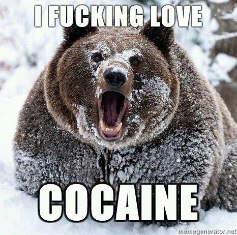 File:Cocaine bear.jpg
