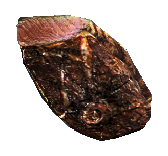 File:Mirelurk queen steak.png