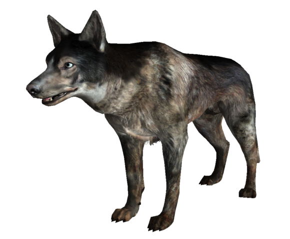 File:Dog FO3.png