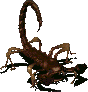 FoModel Radscorpion