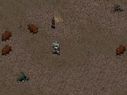 FO1 Random Herdsman
