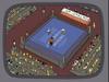 Celebrityboxing