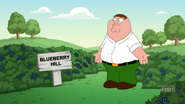 File:BlueberryHill.png
