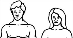 Human-genders