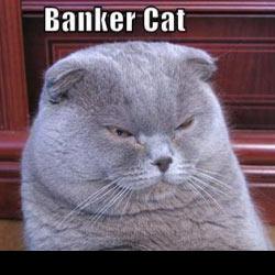 File:Bankercat1.jpg