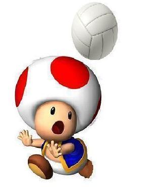 File:Toad MSSMT.jpg