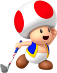 Toad MGWT