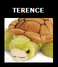File:Terence SSBET Logo.png