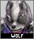 IconWolf O'Donnell