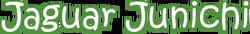 Versus Planet - Jaguar Junichi logo