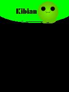 Kibiannewboxart