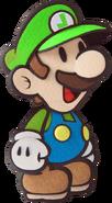 Paper Luigi (WGC)