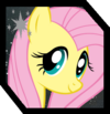 FluttershyBox