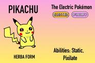 Herba Pikachu Info