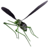 Toxic Bloodbug